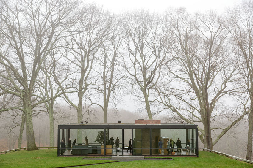Philip Johnson's Glass House in New Canaan, Connecticut Architecture Architecture Bare Tree Built Structure City Day Glass House Grass Grassy Growth Lawn Lifestyles Mid Century Architecture Mid Century Modern Modern Architecture Modernist Architecture Nature Outdoors Park Philip Johnson Sky Tranquility Tree Tree Trunk
