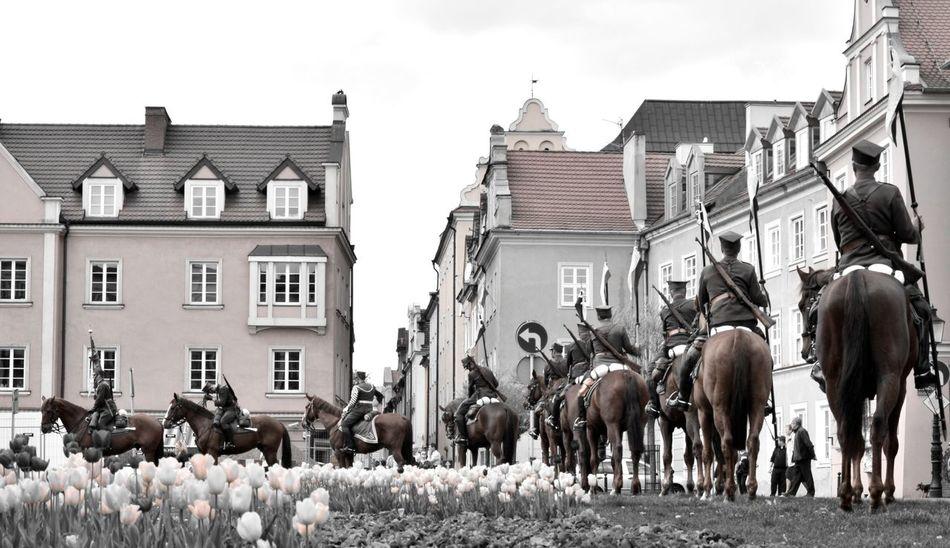 Architecture Horse Horseback Riding Lancer Large Group Of Animals Large Group Of People Men Unform