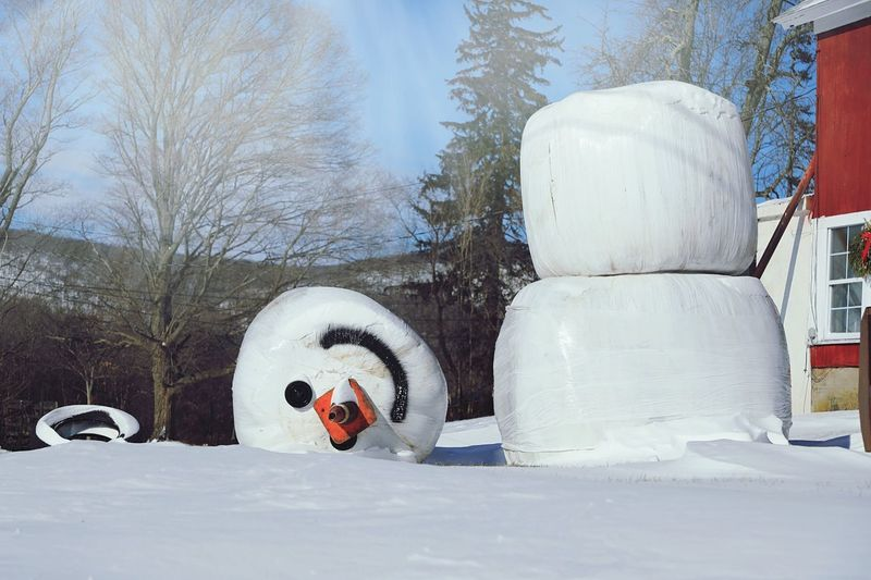 Winter Snowman No People Snow Cold Temperature Day Outdoors