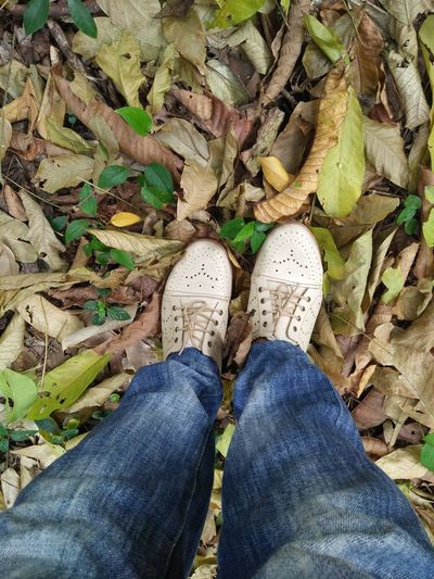Shoe Real People One Person Jeans Outdoors Nature Close-up Standing Travel Destinations Low Section