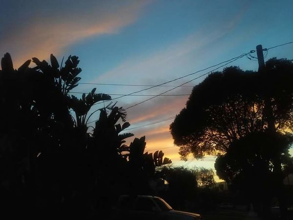 Tree Silhouette Sky Sunset No People Nature Growth Beauty In Nature Outdoors Day EyeEmNewHere Fashion Stories Palm Tree Car Cable Scenics Transportation Cloud - Sky Shades Of Winter An Eye For Travel