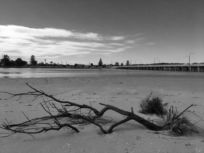 Sky Sand Beach