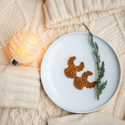 Christmas Holidays Decoration Cookies Baked At Home Cozy Sweather White Gingerbread Reindeer Moments Magic Modern Spirit Winter Wintertime Season  Food Sweets Directly Above Plate High Angle View Sweet Food Cookie Brown Snack