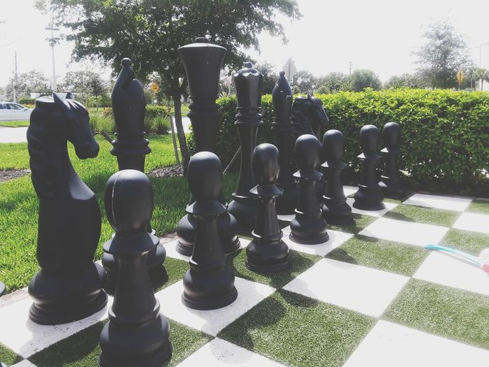 Chess Chess Board Tree Pawn - Chess Piece Strategy