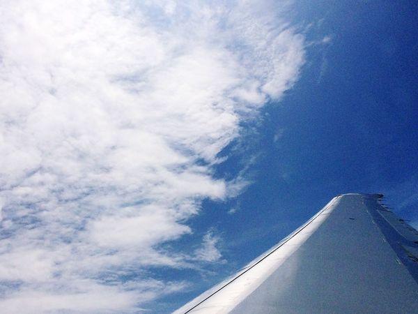 Texas Sky High