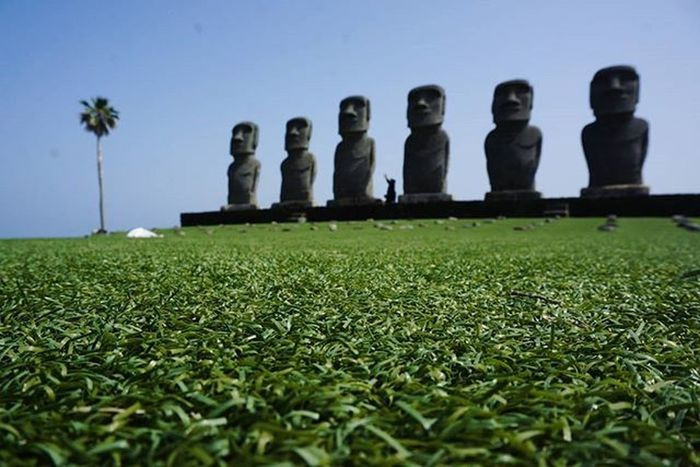 モアイ見てきた🗿🗿🗿 ⚠イースター島ではありません サンメッセ日南!!行ったことなかったからよかったです(^^♪ 暑かった😅😅広すぎ! 夏かよってくらい暑い 油津商店街と飫肥にも行った 日南バスぶらり旅 記録更新の予感 宮崎の魅力を再発見シリーズ Japan Miyazaki Nichinan Moai Worldheritage Bus Enjoyed Thx Instagood L4l F4F Team_jp_ 宮崎 日南 サンメッセ日南 モアイ 幼稚園からほぼいっしょ ありがとーう 広島行きます 写真撮ってる人と繋がりたい 写真好きな人と繋がりたい ファインダー越しの私の世界