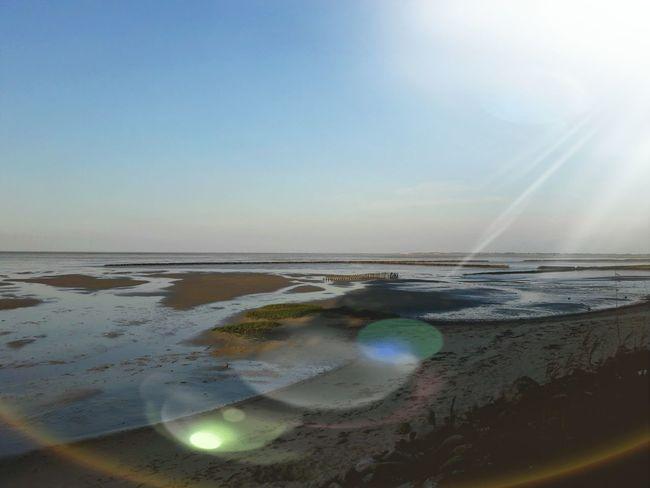 Abend Abendstimmung Abendhimmel wattenmeer Nordseeküste Norddeutschland Nordfriesland Nordsee Wattenmeer Sylt