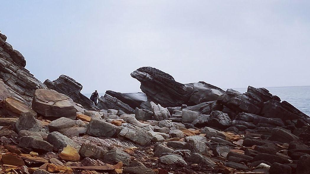 Stone, eagle, sea , beach