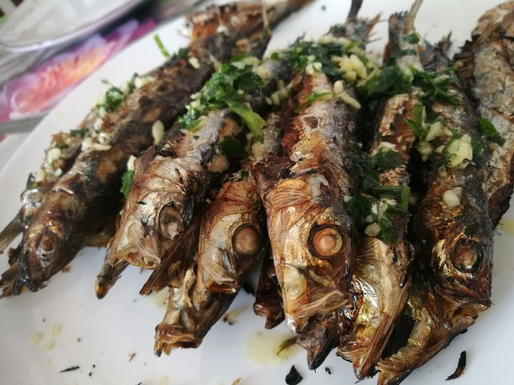 espetos Spanish Food Andalucía Malaga Spanish Food Tapa Sardina Espeto Food Malaga Seafood Close-up Food And Drink Fish Market Dried Fish  Dried Food Commercial Fishing Net Mediterranean Food