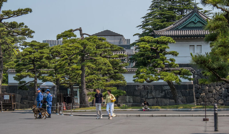 Security police at the Tokyo Imperial Palace ground. Check City Day Ground Guards Imperial Imperial Palace Japan Outdoors Palace People Person Police Security Tokyo Tourism Tourist Tourist Attraction  Tourist Destination Tree
