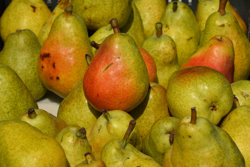 Fresh pears at fruit retail farmer market stall display Abundance Agriculture Arrangement Display Farming Food Fresh Fruit Green Color Healthy Healthy Eating Juicy Large Group Of Objects Market Nutrition Pear Retail  Ripe Sale Small Business Stall Store Supermarket The Shop Around The Corner Vibrant Color