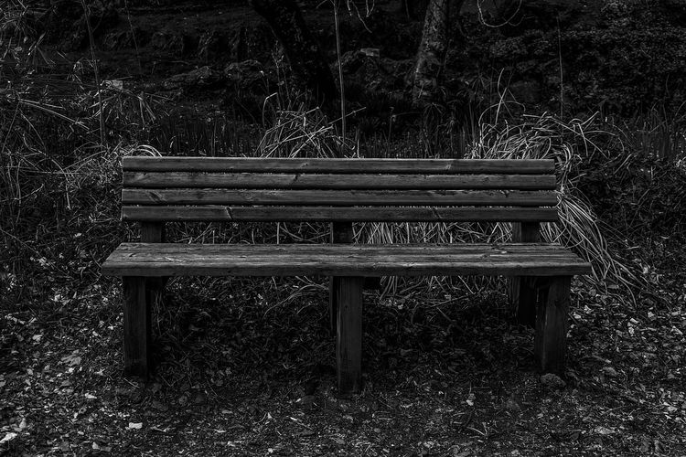 EyeEm Selects Seat Wood - Material Bench Field Sunlight Land Relaxation Outdoors Plant Absence Empty Nature Black And White Black & White Black And White Photography Close-up Bnw_friday_eyeemchallenge Stay Out My Best Photo