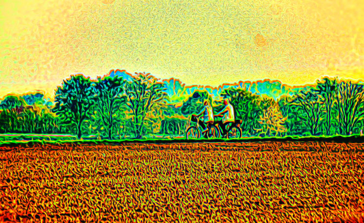 Backgrounds Close-up Cyclist Day Fietser Green Color Nature Nature Outdoors Radfahrer Textured  Yellow