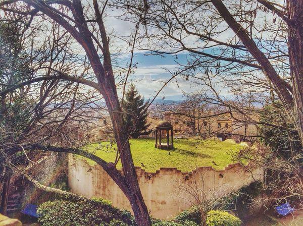 Garden Park Rural Scenes Popular