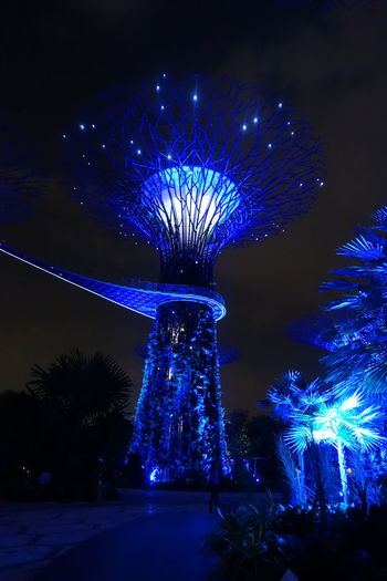Hot Spot Night Night Lights Outdoors Singapore Singapore City Singapore View Travel Destination