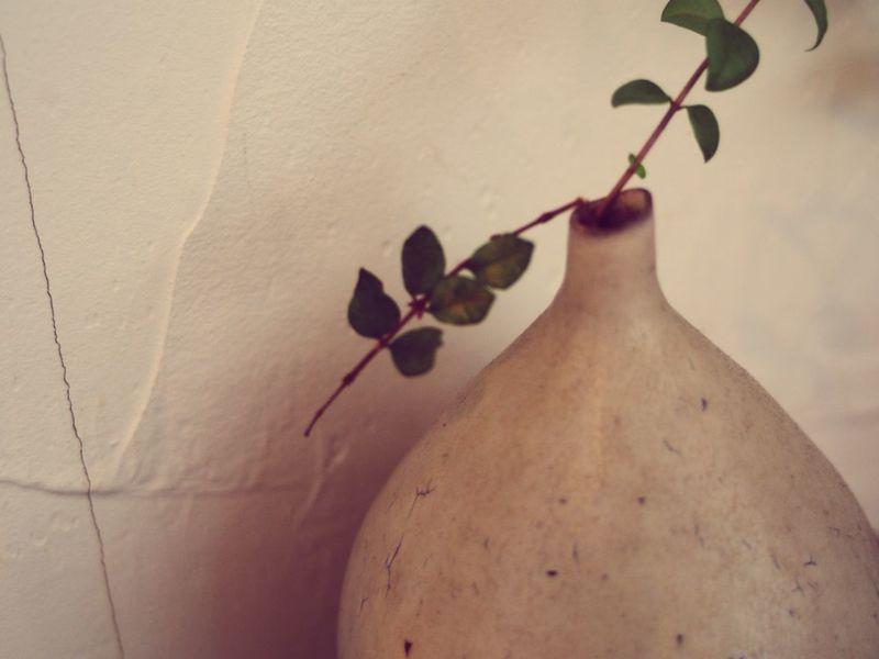 Leaf Flowerpot Flowerpots Green