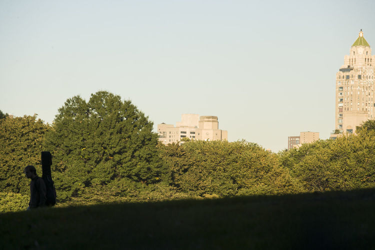 Trees and buildings against clear sky