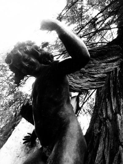 Walking Around Blackandwhite Quality Time Angel