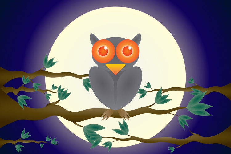Happy Halloween The owls are on the branches Moon backdrop Halloween Background Witch Treat Moon Vector Happy Trick  Whimsical Holiday Party Night Horror Spooky Sky Tree Cartoon Branch Scary Bat Moonlight House Cemetery Haunted Illustration Creativity Art And Craft Representation Face Anthropomorphic Face Indoors  Anthropomorphic Close-up No People Craft Multi Colored Bird Illuminated Human Representation Nature Celebration Anthropomorphic Smiley Face