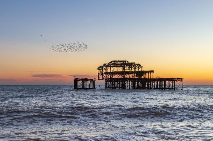 Sunset at Brighton Beach, with a Murmuration of Starlings Beside the Old West Pier Water Sky Sea Sunset Built Structure Architecture Waterfront Horizon Over Water Scenics - Nature Beauty In Nature Horizon Nature No People Tranquil Scene Tranquility Orange Color Idyllic Clear Sky Outdoors West Pier Brighton Murmuration Murmuration Of Starlings Pier Ruined