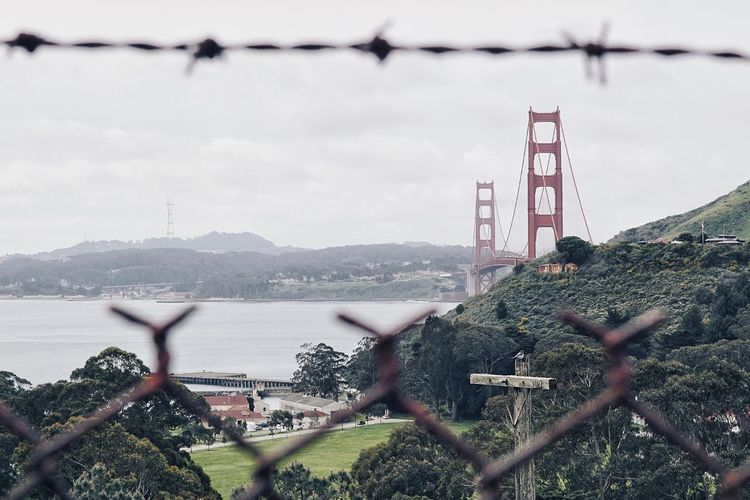 San Francisco Golden Gate Bridge through fence Swinginginaplumtree San Francisco, California Professionalphotography Perfect Picture Wonderful Professional San Francisco Golden Gate Bridge In Background California Golden Gate Park Golden Gate Bridge Is Red USA Travel Usa Built Structure Architecture Fence Sky Boundary Barrier Building Exterior Nature Outdoors Building