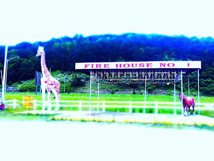 Road Trip Tennessee Interstate View Road Side View Fireworks Stand Abandoned Photo Editor Pro Georgia Via Michigan Keylime