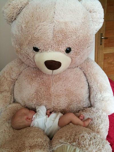 Baby Teddybear Baby And Teddybear