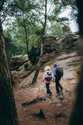 Rear View Of Couple Holding Hands While Walking On Rocks In Forest