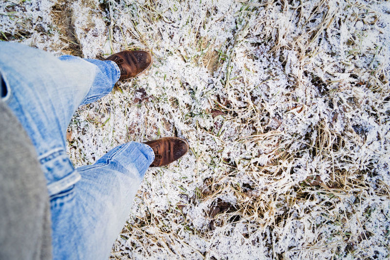 Low section of man standing on snow covered field