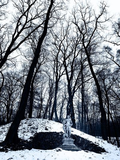 Diana Cold Temperature Snow Winter Tree Nature Bare Tree Tranquility Weather Beauty In Nature No People Scenics Tranquil Scene Outdoors Day Na Cibulce Prague Sculpture Statue Beauty In Nature