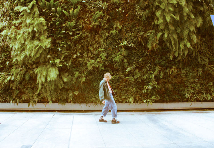 Side view of man walking on footpath against trees