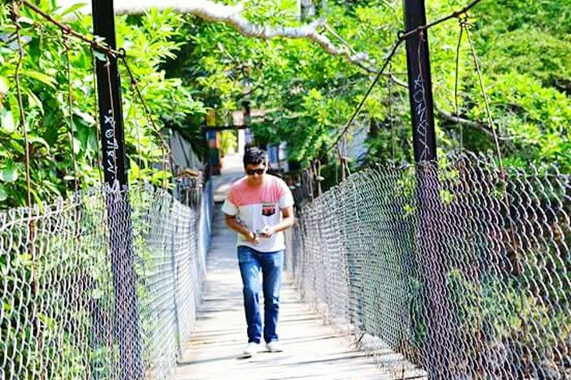 Walking Bridge Woods Trees Trip Photography Boy Bridges Wood Bridge Puerto Vallarta