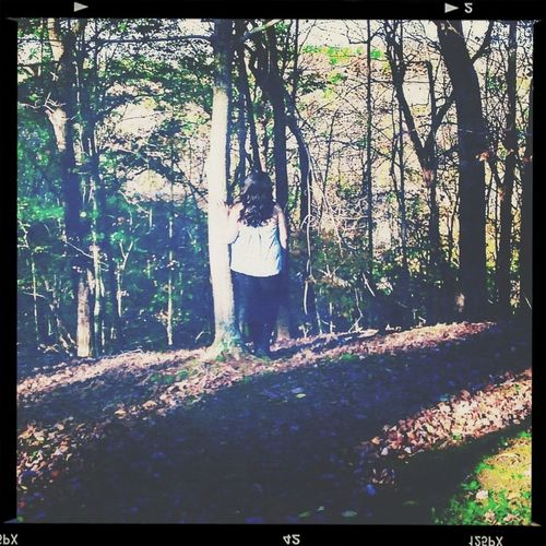 A simple walk in the woods. Hello World Taking Photos That's Me Simple Photography