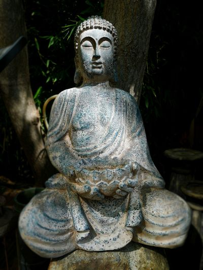 Close-up Stone Built Sculpture Statue Place Of Worship Spirituality Religion Idol Buddha Sculpted Art