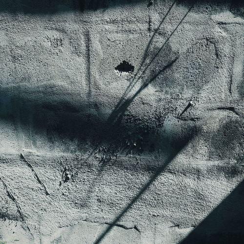 Shadow of birds on wall