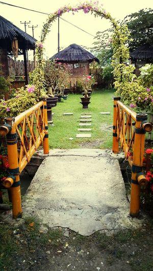 Welcome In The Garden Flowers