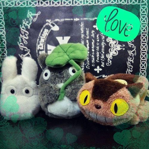 日本的龍貓專賣店太好買了 不小心就買了3個娃娃... 而且那個手帕毛巾 每個都可愛到不知道選什麼花色 現在心裡想的都是小魔女宅急便的手帕? Cute 龍貓 豆豆龍 Totoro Japan Doll Like 日本 娃娃