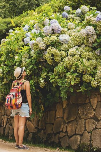 Rear View Of Woman Looking At Flowers On Surrounding Wall