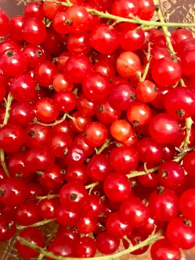 Red Healthy Eating Food And Drink Food Wellbeing Freshness Fruit