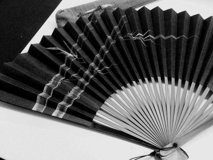 Folding Fan Blackandwhite Black And White 昔奮発して購入した扇子。10年目かな?