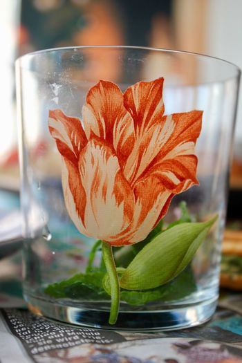 Beauty In Nature Close-up Day Drink Drinking Glass Drop Flower Flower Head Focus On Foreground Food And Drink Fragility Freshness Indoors  Leaf No People Plant Refreshment Table