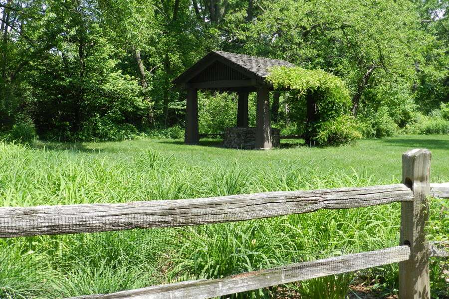 Make a Wish Beauty In Nature Day Field Grass Grassy Green Green Color Growth Henry Ford Estate Landscape Lush Foliage Nature Outdoors Plant Rural Scene Scenics Tranquil Scene Tranquility Tree Tree Trunk Well  Wishing Well Wood Wood - Material Wooden