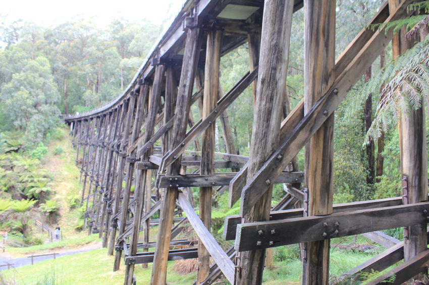 Noojee Trestle Bridge Handbuilt Digital Photography Old-fashioned Old But Awesome Old Days Made To Last Built Structure Built To Last Noojee Noojee Trestle Bridge Old Wooden Bridge Outdoors Wood - Material Wooden Bridge Forest Nature No People Day