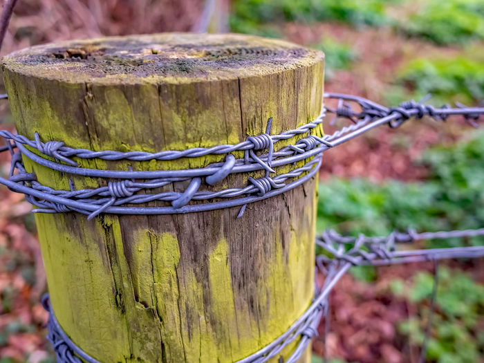 Close-up of rope tied on wooden fence