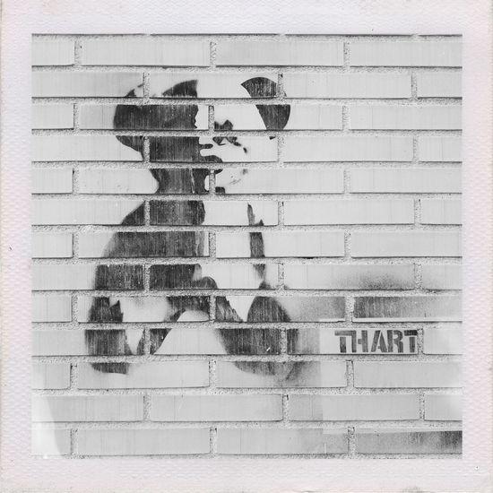 Teddy Bear got