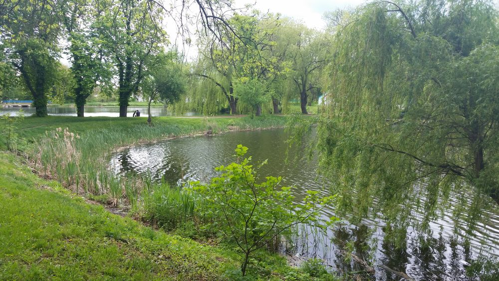 Water Green Color Nature Day No People Plant Beauty In Nature Sky Travel Travel Destinations Ukraine, My Ukraine! Ukraine Beauty In Nature Nature Zhytomyr Andrushivka