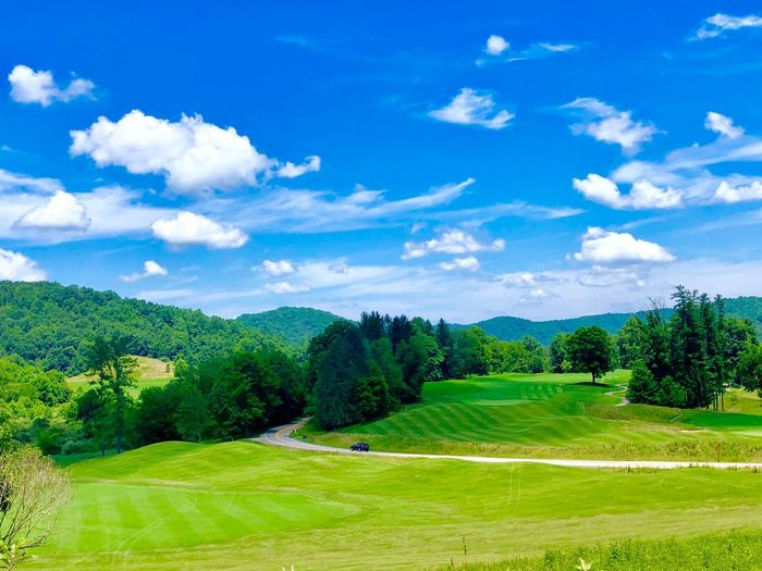 Golf Plant Tree Sky Green Color Cloud - Sky Beauty In Nature Tranquil Scene Grass Tranquility Scenics - Nature Day Land Landscape Nature Field Environment Growth Sunlight No People Blue