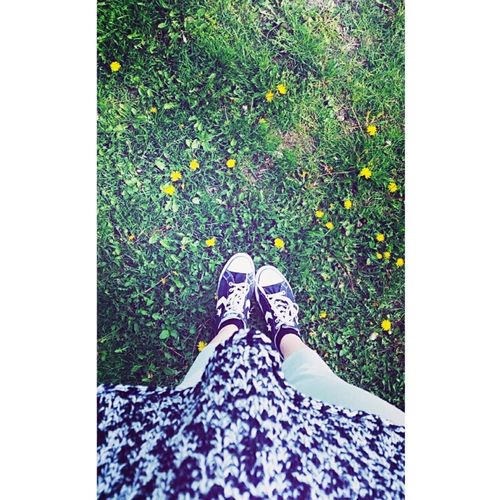Flowers Love Spring Spring Flowers Sun Sunnyday Smile Green Blackconverse Sunshine