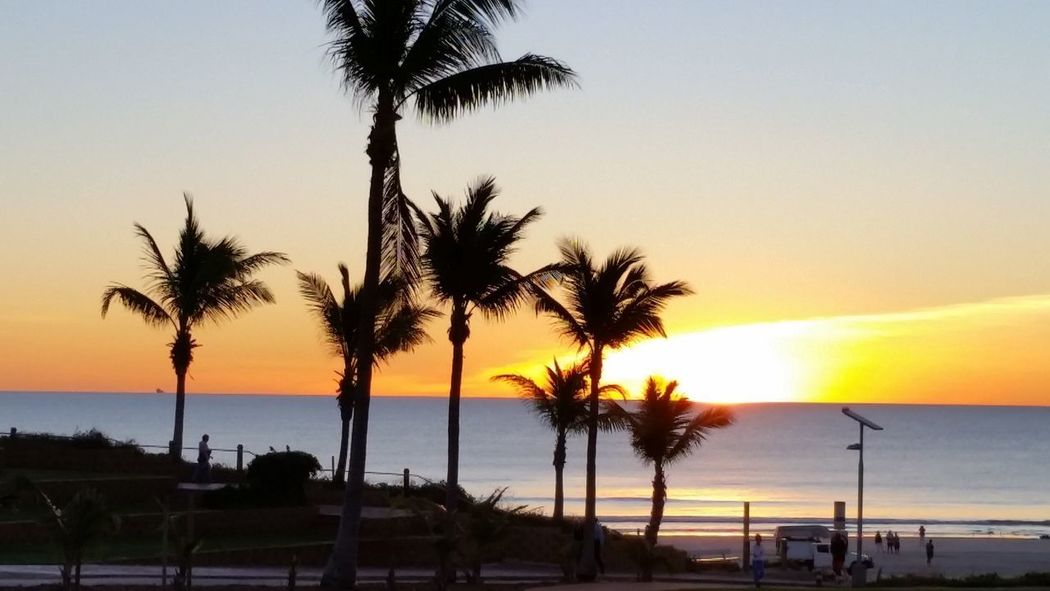 Cable Beach sunset Beach Beauty In Nature Horizon Over Water Palm Tree Scenics Sea Silhouette Sunset Tourist Destination Tranquil Scene Tranquility Travel Australia Travel Destinations Vacations