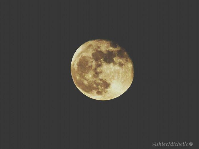 ???? Moon Taking Photos Amateur Texastreasures